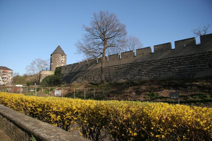 colonia medieval tour